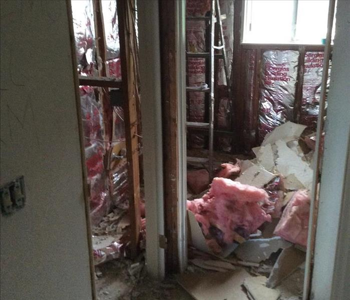 Water and mold damage in Windsor