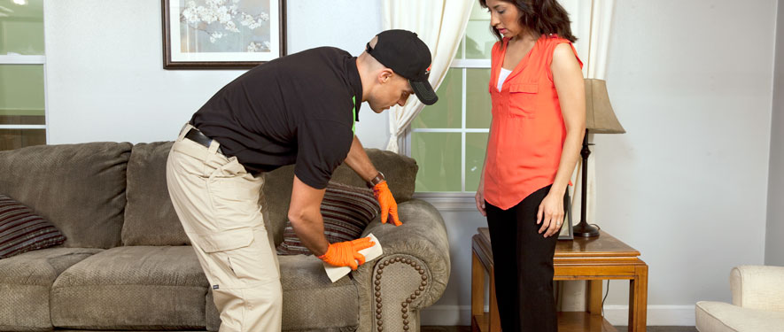 Santa Rosa, CA carpet upholstery cleaning